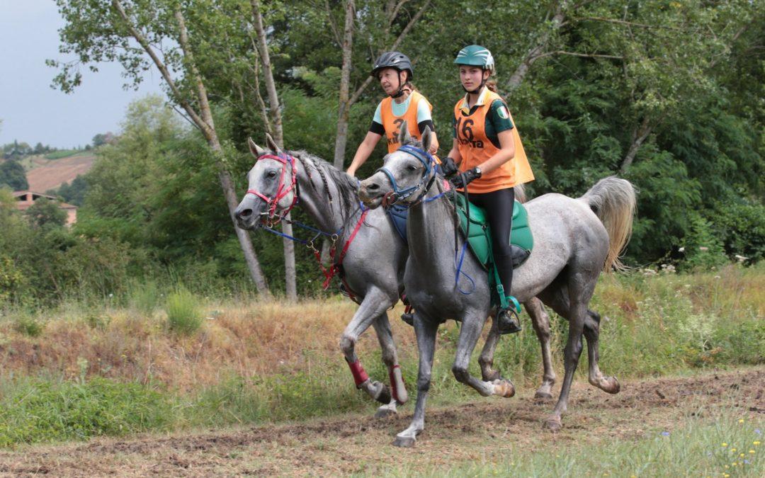 Risultati Campionati Italiani ANICA – FEI e regionali ASD Wild Horse – Città della Pieve (PG)