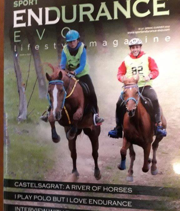 Sport Endurance Evo n.27