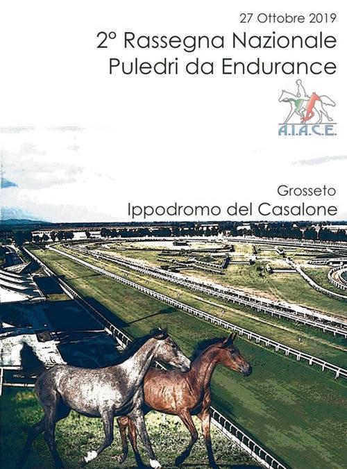 """2^ Rassegna nazionale """"Puledri da Endurance"""","""