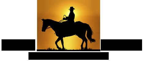 Prima-tappa endurance 2020 – Wild Horse Umbria