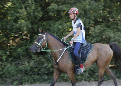 Vizzini Carlo CEI2* 120 km